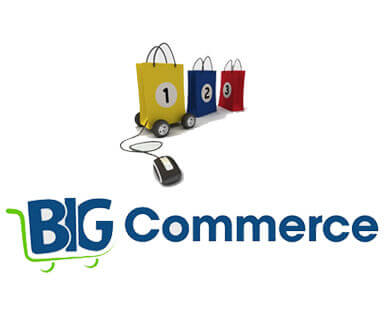 Big Commerce Customization